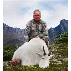 British Columbia Mountain Goat Hunt for One Hunter