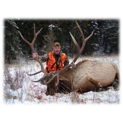 Elk Hunt in Gardiner Montana for One Hunter