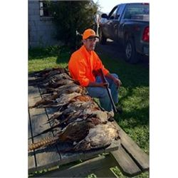 Four Wingshooter - Pheasant Hunt