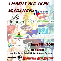 Rraa presents charity auction bazaar live only rod for Charity motors auction 8 mile