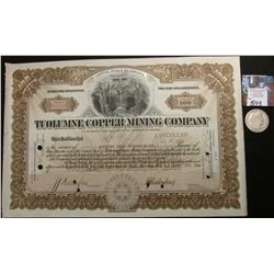 "1916 Arizona Stock Certificate ""Tuolumne Copper Mining Company"", 100 Shares; & 1915 S  Barber Half D"