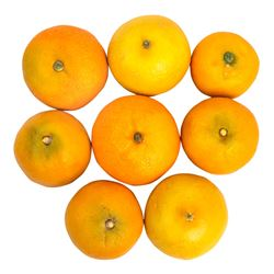 Set of 8 Fake Oranges from The Interview