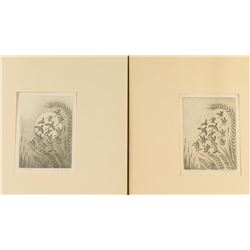 Collection of 2 Fine art etchings