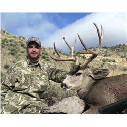 5-day New Mexico Trophy Mule Deer Rifle Hunt for Two Hunters