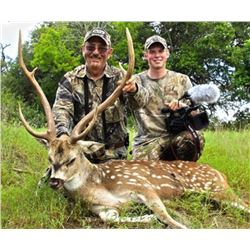 3-day/2-night Texas Exotic Hunt for Two Hunters and Two Observers--Includes $4,000  Credit Towards T
