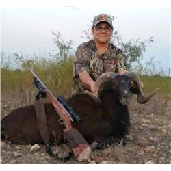 2-day Texas Exotic Big Game Hunt for Two Hunters