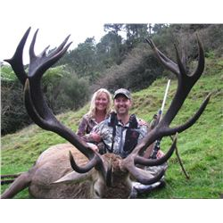 5-day/4-night New Zealand Red Stag and Rusa Stag Hunt for Two Hunters and Two Observers