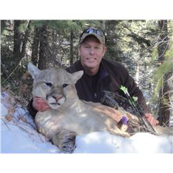7-day Utah Mountain Lion Hunt for One Hunter