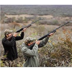 4-day/3-night Argentina Dove Hunt for Four Shooters