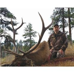 5-day New Mexico Elk and Black Bear Rifle or Muzzleloader Combo Hunt for Two Hunters
