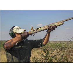 4-day/3-night Argentina High Volume Dove Shoot for Two Hunters