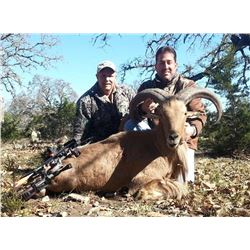 3-day Texas Exotic Big Game Hunt for Two Hunters