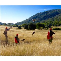 3-day/2-night California Pheasant Hunt for Two Hunters