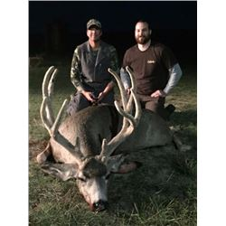 3-day/4-night Wyoming Antelop and Management Mule Deer Hunt for One Hunter and One Observer