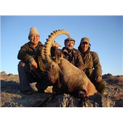 5-day Mongolian Ibex hunt for one hunter