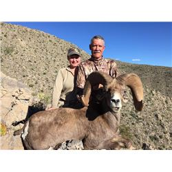 7-day Mexican Desert Sheep hunt for one hunter and one observer