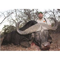 7-day South African Cape Buffalo hunt for one hunter