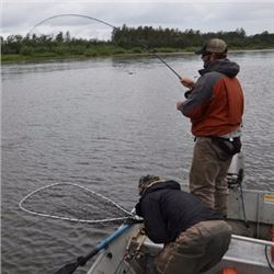 5-day/6-night Mulchetna River fishing trip for 4 Anglers