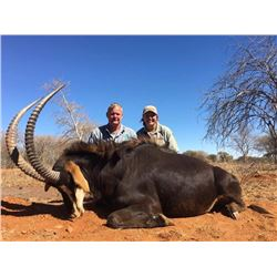 6-day South African Sable Hunt for One Hunter and $500 Credit Towards Plains Game Hunt for a Second