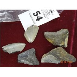 Bag Lot of Arrowheads