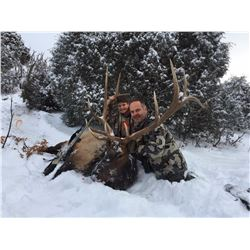 New Mexico Elk (up to 330 SCI)