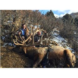 New Mexico Elk (up to 374 SCI)