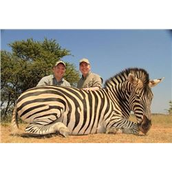 South African Hunt for Burchell's Zebra, Black Wildebeest and Common Waterbuck