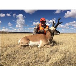 Fair Chase Pronghorn Antelope Hunt in Craig, Colorado (2018)