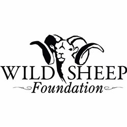 Life Membership to Wild Sheep Foundation