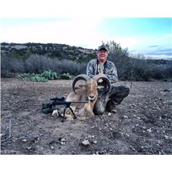 Fair Chase Trophy Aoudad Hunt in Carta Valley, Texas