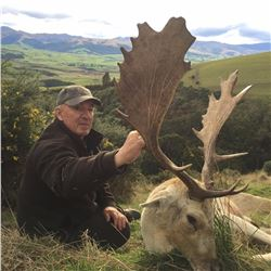 New Zealand Trophy Hunt