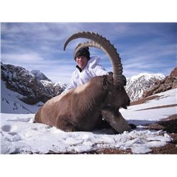 Mid-Asian Ibex