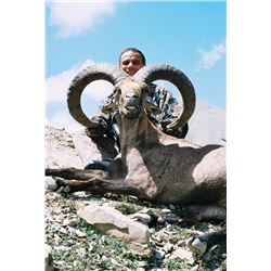 "Eight Day Dagestan Tur/""ibex"" hunt in Azerbaijan"