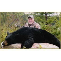 Spring Black Bear Hunt in Quebec