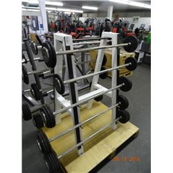 King weight stand with weights