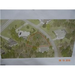 Oak VIllage _ Sugarmill Woods Property Lot 7, Block B-176 - 4 Carnation St - Homosassa FL