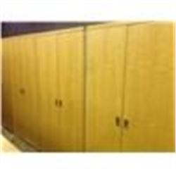 6' X 6' 4 DOOR BIRDSEYE MAPLE STORAGE CABINET
