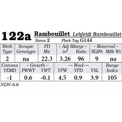 Lot 122a - Rambouillet