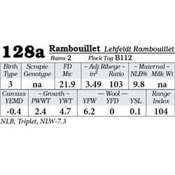 Lot 128a - Rambouillet