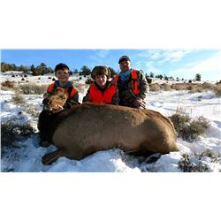 Montana - Sunday Creek Outfitters - Paul Ellis Montana parent/child or 2 child Cow Elk
