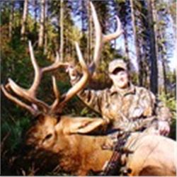 Montana - Elk Creek Outfitters-Choice of Archery Elk or Black Bear Elk Creek Outfitting