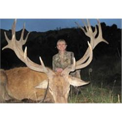"New Zealand - Spey Creek Silver Medal Red Stag (360"")"
