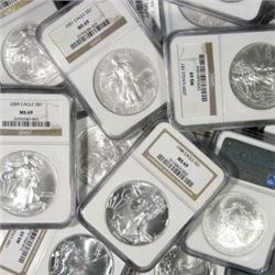(10) MS 69 Silver Eagles- NGC-PCGS-IGC