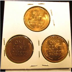 1955 P D S Lincoln Cent Set of 3 coins    RD-65
