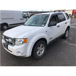 2008 FORD ESCAPE HYBRID, 4 DOOR SUV, WHITE, VIN # 1FMCU59H58KE67420