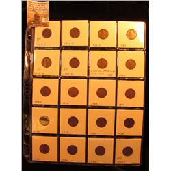 Plastic page with (20) Lincoln Cents, Includes: (3) 1932 D, 33P, (2) 33D, & (14) 34P.