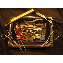 Nut Pick, forceps, Scissors, clippers, and various other small hand tools.