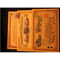 "192.9876 Shares ""Trust Certificate The Virginia & Rainy Lake Company"" dated 1937; 100 Shares ""The De"