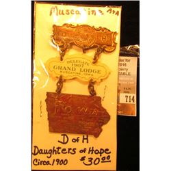"""Delegate 1907 Grand Lodge Muscatine, Iowa ""Daughter's of Hope"" Iowa"" Badge, medals, and hangar."