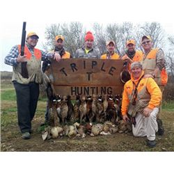 TRIPLE T HUNTING ADVENTURES - LYNCH NEBRASKA | PHEASANTS